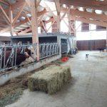 exploitation agricole
